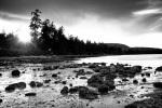 davidniddrie-saltspring-0882