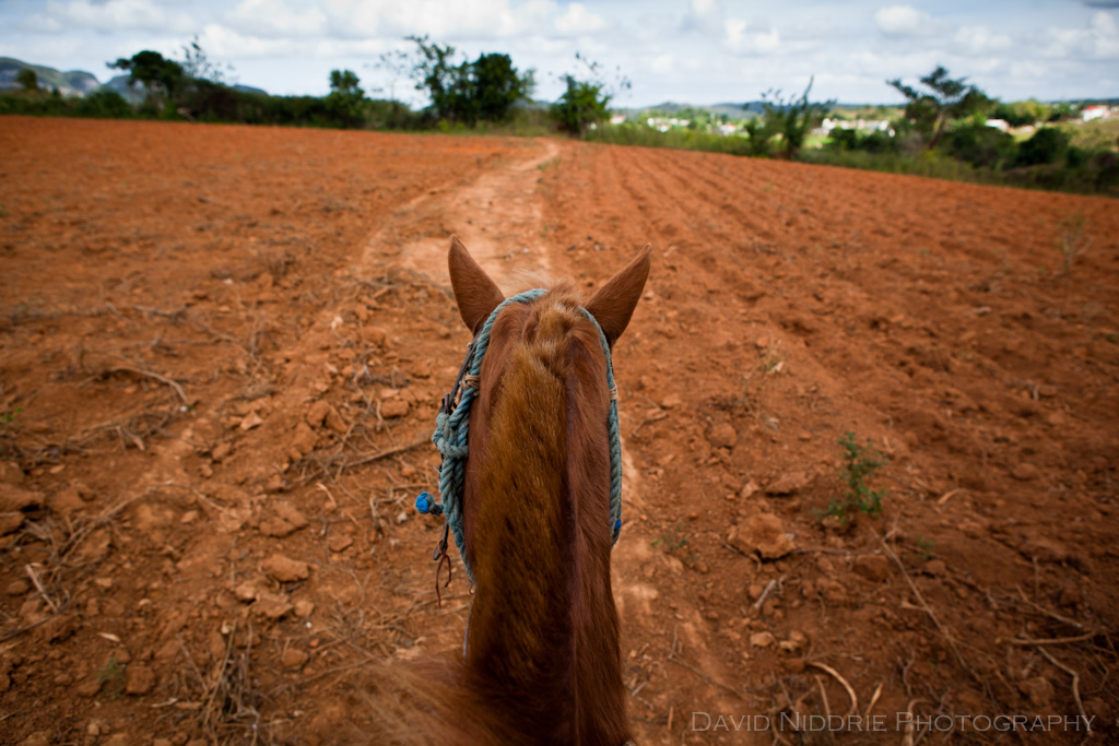 Vinales on horseback