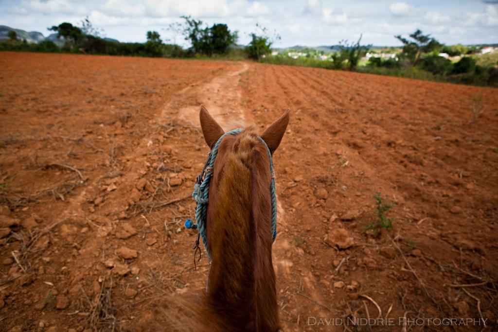 Vinales on horseback
