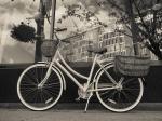davidniddrie_bicycle_M58-7735-2