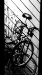 davidniddrie_mexico-bicycle-1150