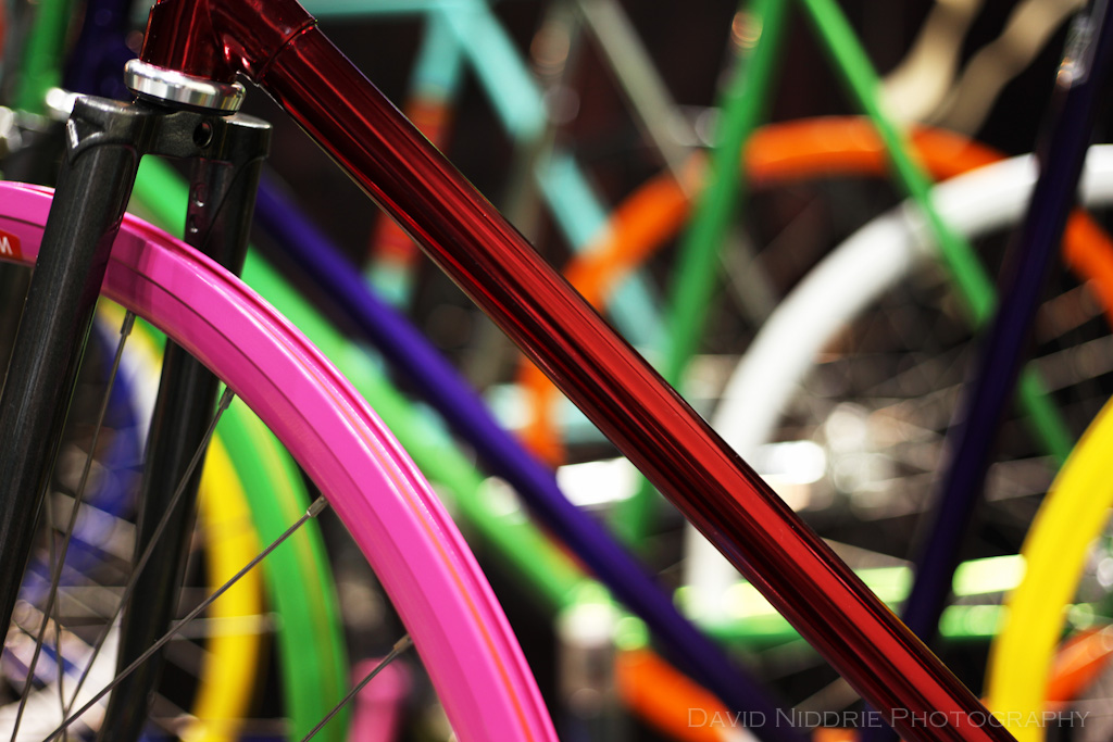 davidniddrie_bicycle_nahbs09-1072