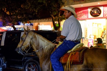davidniddrie_mexico_guadalupe-0522240
