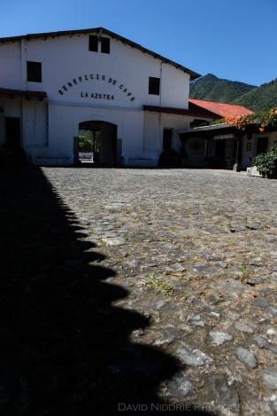 davidniddrie_guatemala_coffee-5736