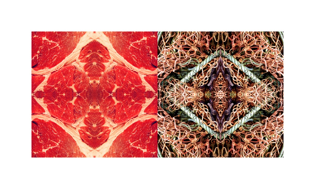 davidniddrie-diamondsdiptych_meatrope_oct2013