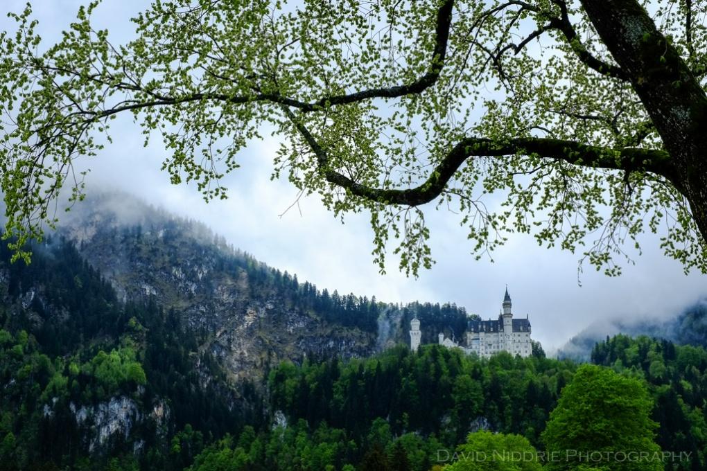 davidniddrie_bavaria-4317