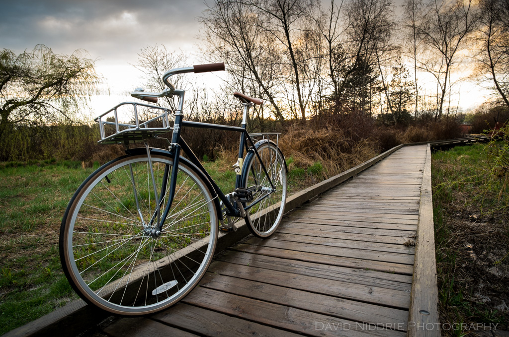 davidniddrie_bicycle_state-2283