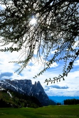 davidniddrie_italy_sudtirol-4648