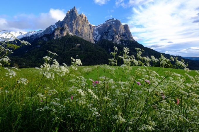 davidniddrie_italy_sudtirol-4794