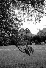 davidniddrie_italy_sudtirol-4871