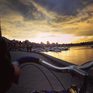davidniddrie_bicycle_rivendell-3394