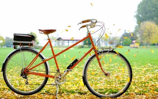 davidniddrie_bicycle_rivendell-9063