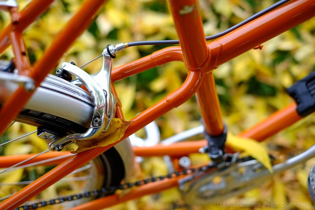 davidniddrie_bicycle_rivendell-9089