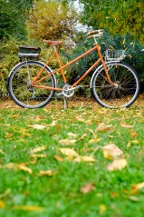 davidniddrie_bicycle_rivendell-9163