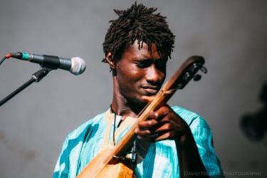 Vancouver Folk Music Festival - Bassekou Kouyaté and Ngoni Ba