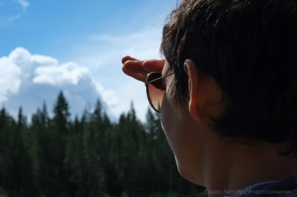 A woman gazes towards the forest.