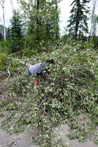 A woman clears the road from fallen tree debris along a BC highway.