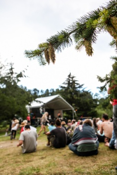 Stage 5 at Vancouver Folk Music Festival.